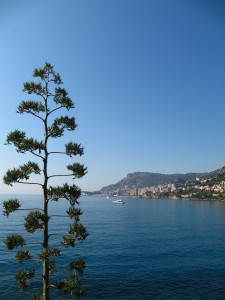 Cap Martin walking path